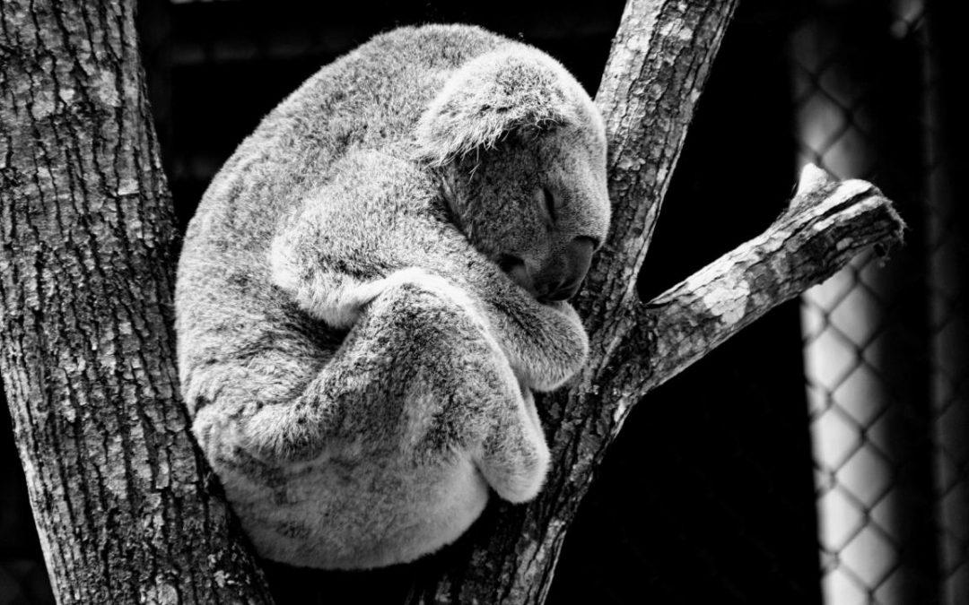 Jak tu zasnąć? – moje sposoby na sen