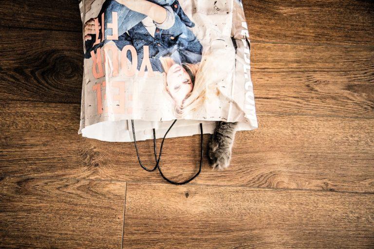 minimalizm a materializm